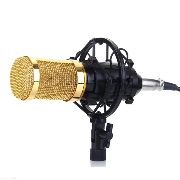 mic phong thu